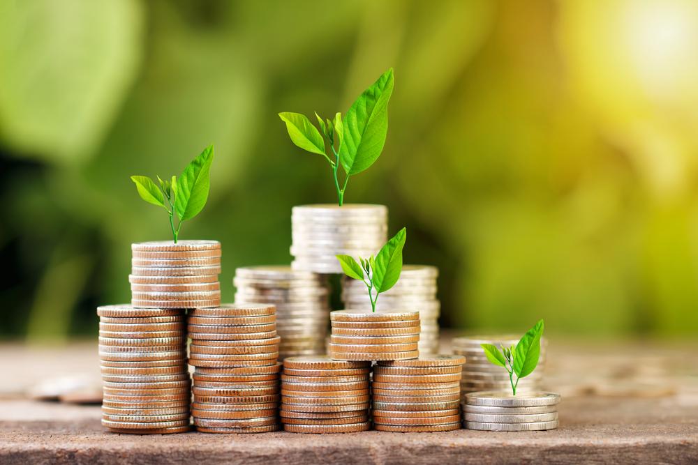 Private Equity e finanza aziendale Tim Management