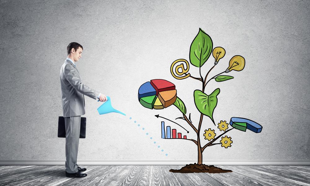 Guida al Business Plan, cosa inserire e con che struttura